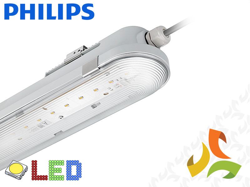 106010511ebd01 Oprawa hermetyczna LED CoreLine 41W IP65, WT120C PHILIPS mezoko.com